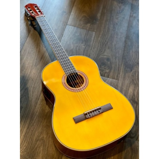 CHARD EC3940 ACOUSTIC ELECTRIC NATURAL IN YELLOW NATURAL WITH FISHMAN