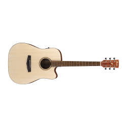 Ibanez PF10CE OPN Acoustic Electric Guitar